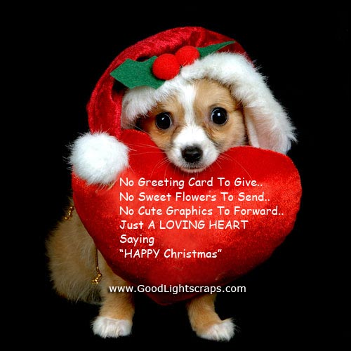 Image result for Merry Christmas FB Profile Pic for Boys