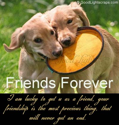 Friends Forever orkut Scraps, quotes, Comments
