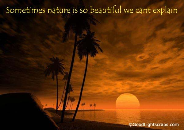 Nature Scraps, nature graphics, and nature images for Orkut, Myspace, Facebook, Hi5, Tagged